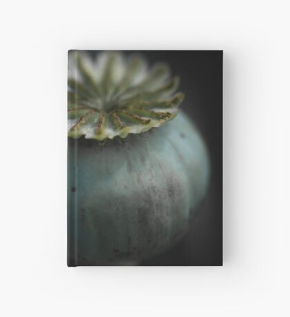 Patterns in Nature - The Poppy Hardcover Journal