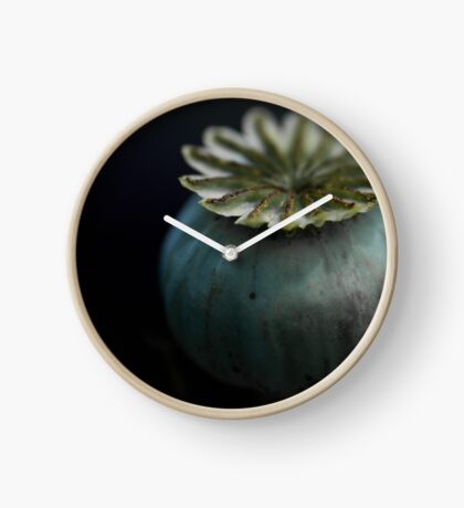 Patterns in Nature - The Poppy Clock