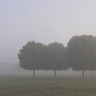 Foggy Sunrise by LizzieMorrison