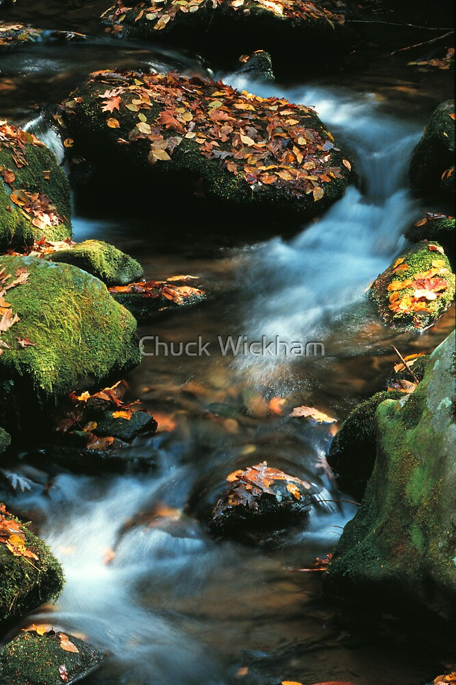 STREAM by Chuck Wickham