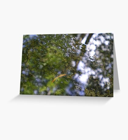 Watery Green Greeting Card