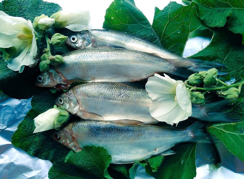 Fresh fish by LoraSi