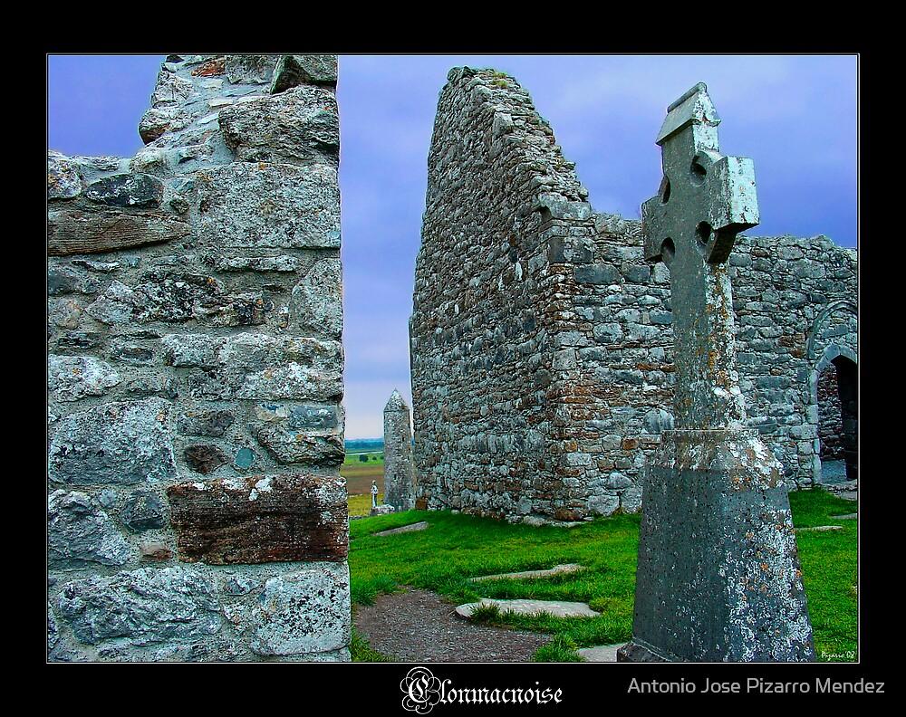 Irish Stone (Clonmacnoise) by Antonio Jose Pizarro Mendez