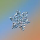 Real snowflake - 13 February 2017 - 5 by Alexey Kljatov
