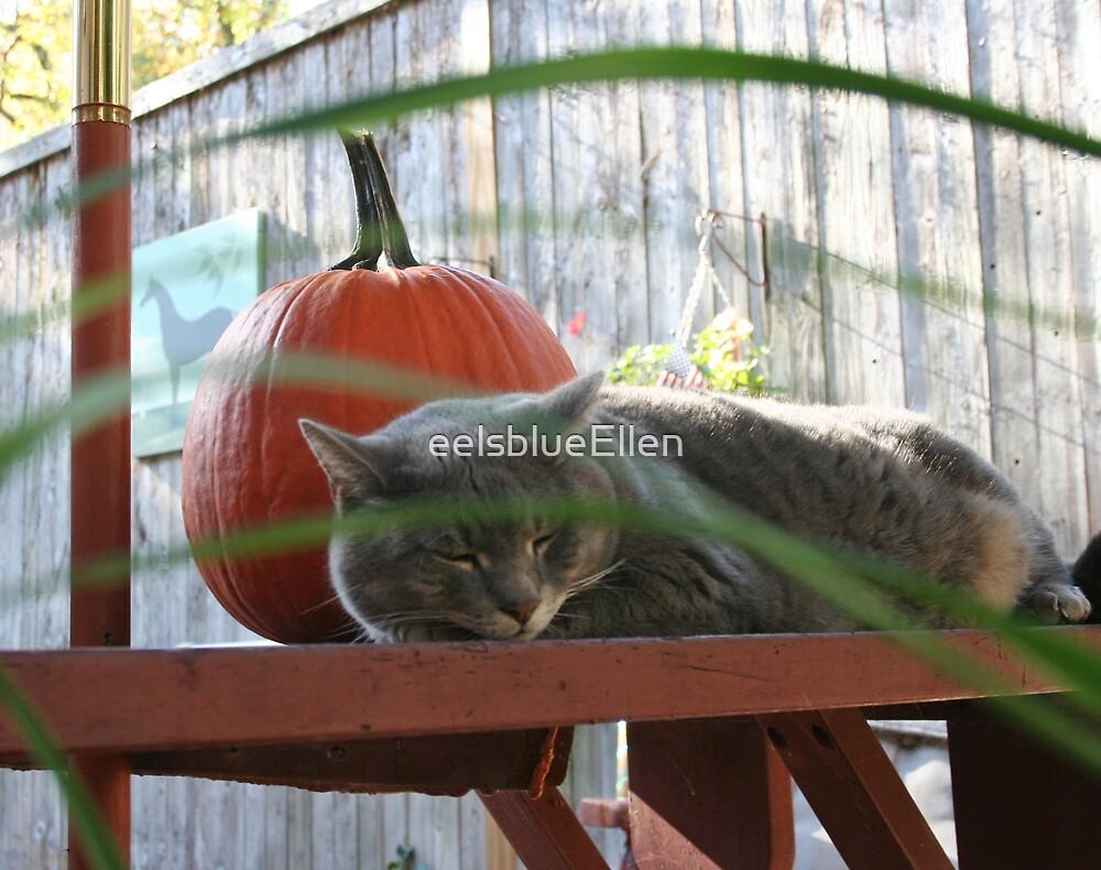 An Autumnal Carlos by eelsblueEllen