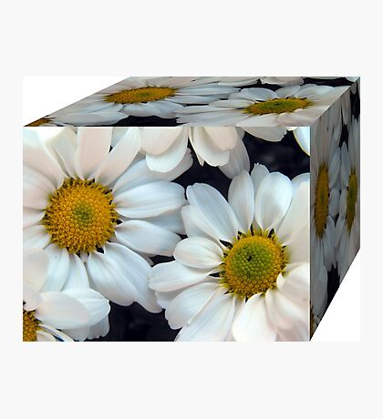 A Box of Daisies Photographic Print