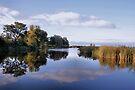 River The Vecht by Jo Nijenhuis