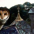 night eyes by Liesl Yvette Wilson