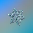 Real snowflake - 13 February 2017 - 5 alt by Alexey Kljatov