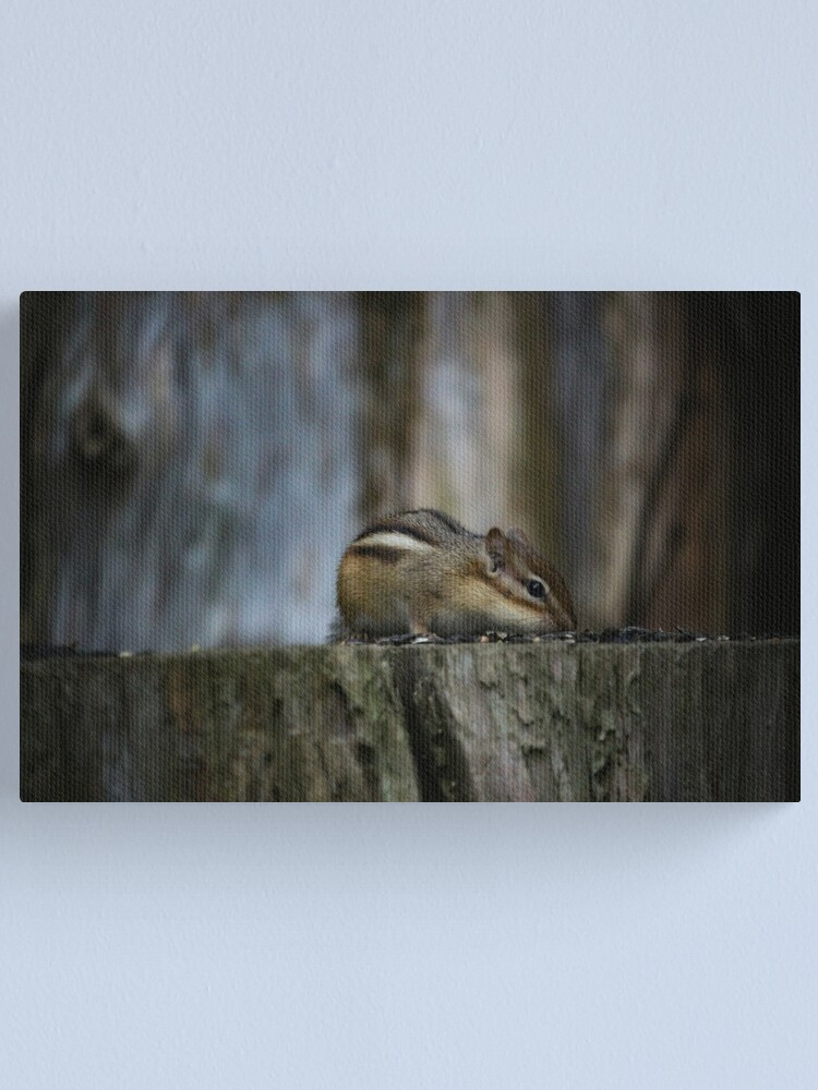 Alternate view of Rainy day visitor Canvas Print