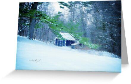 The Still of Winter by Yannik Hay