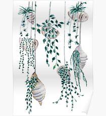 Hanging plants in seashells  Poster