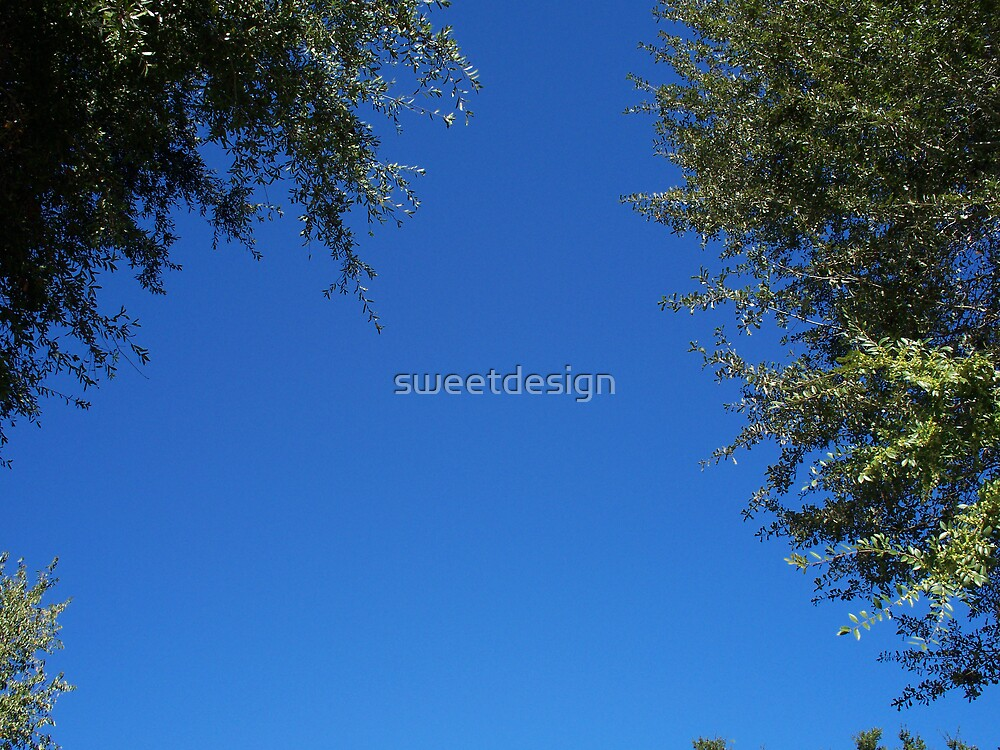 Blue Skies Above by sweetdesign