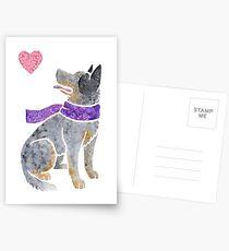 Watercolour Australian Cattle Dog Postcards
