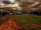 Across The Field 2 by Dan Perez