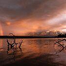 Pine Lake by Marty Samis