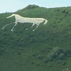 The White Horse Of Litlington_Sussex_UK by Kay Cunningham