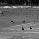 Surfer Soup by Of Land & Ocean - Samantha Goode
