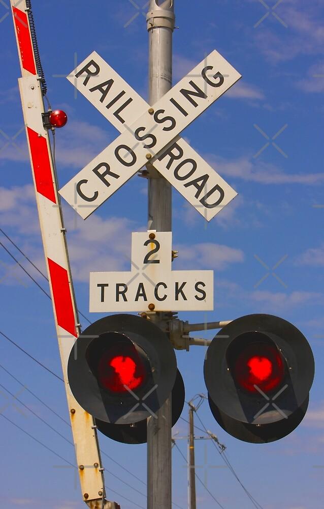 Trains - Railroad Crossing by Buckwhite