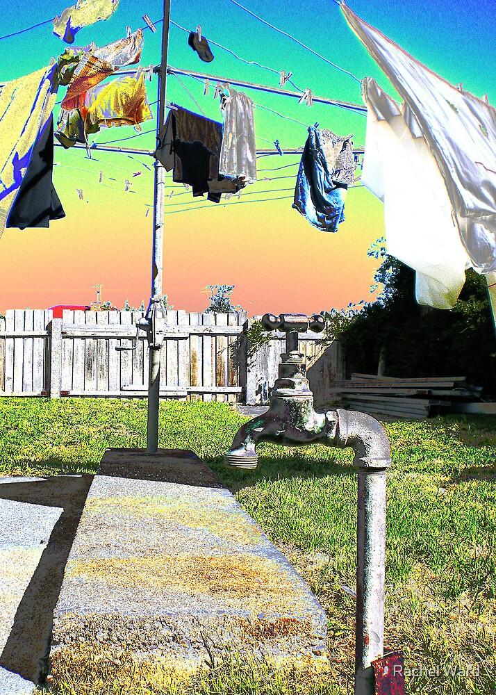 Washing Line by Rachel Ward