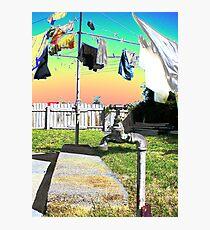Washing Line Photographic Print