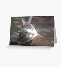 Over the shoulder Mia  Greeting Card