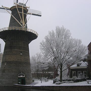 Noord Molen by lilypoh
