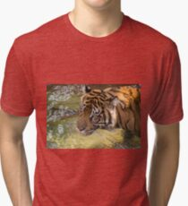 Tiger playing in some water Tri-blend T-Shirt