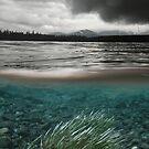 Kathleen River, Yukon by Marty Samis