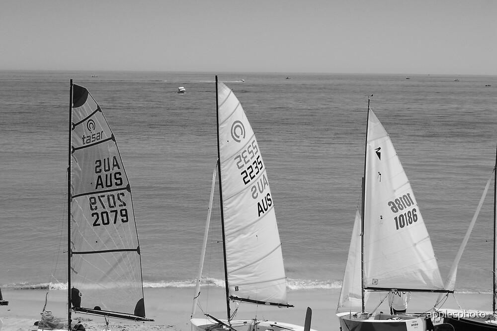 Three Sails by applesphoto