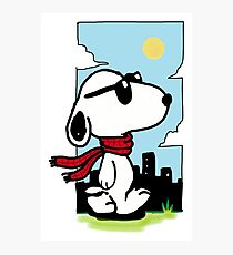 Snoopy Photographic Print
