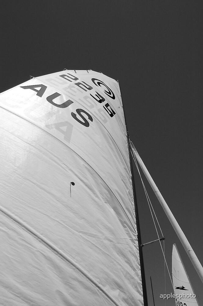 Aus Sail by applesphoto