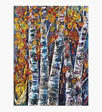 Autumn Aspen Trees With Palette Knife  Photographic Print