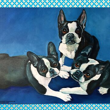 Boston Terriers by grounddogs