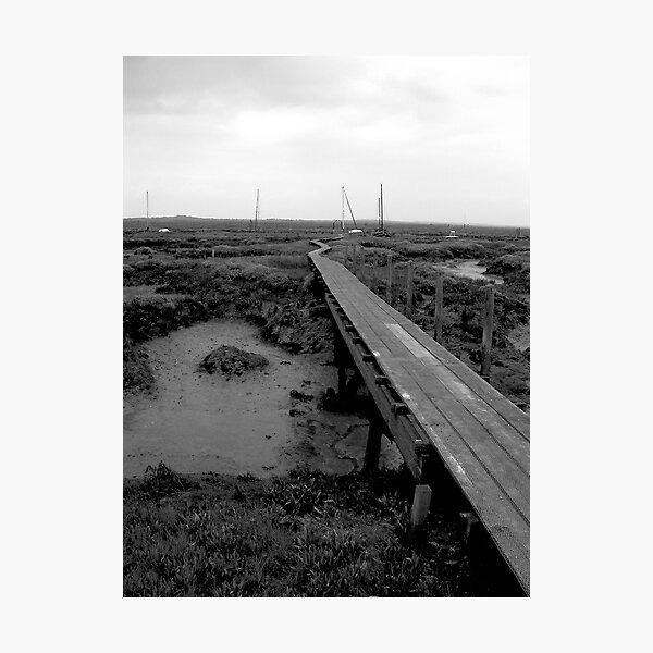 Walkway at Woodrolfe, Tollesbury, Essex Photographic Print
