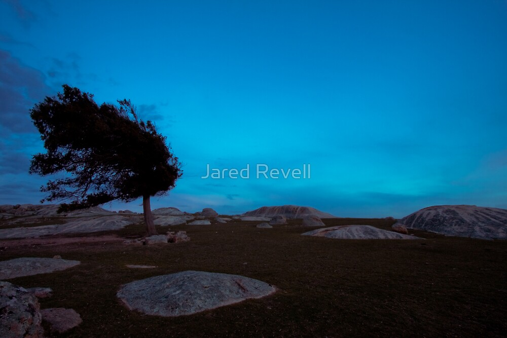 Isolation by Jared Revell