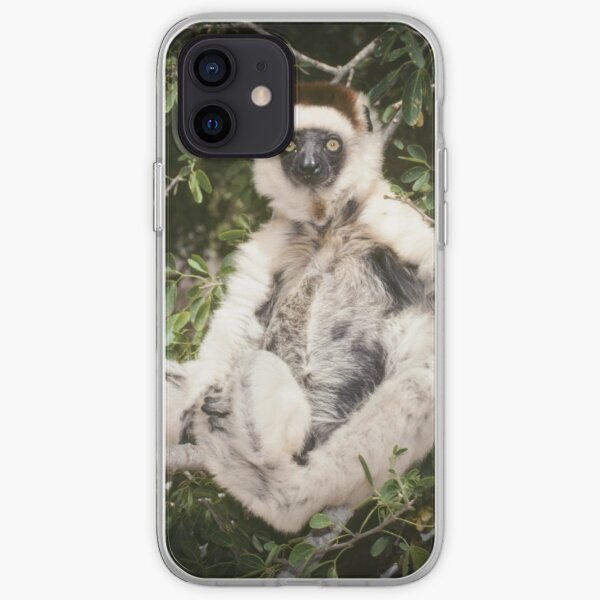 The sifaka will see you now iPhone Soft Case