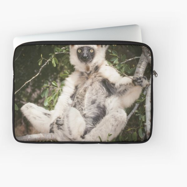 The sifaka will see you now Laptop Sleeve