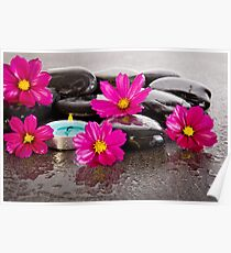 Calm With Pink Cosmos And Candle Poster