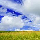 Heaven and Earth by Alan Watt