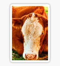 Thomas the Fluffy Cow Sticker