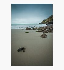 Tidal Motion Photographic Print
