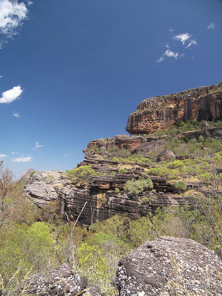 Kakadu National Park, Northern Territory by Lisa Evans