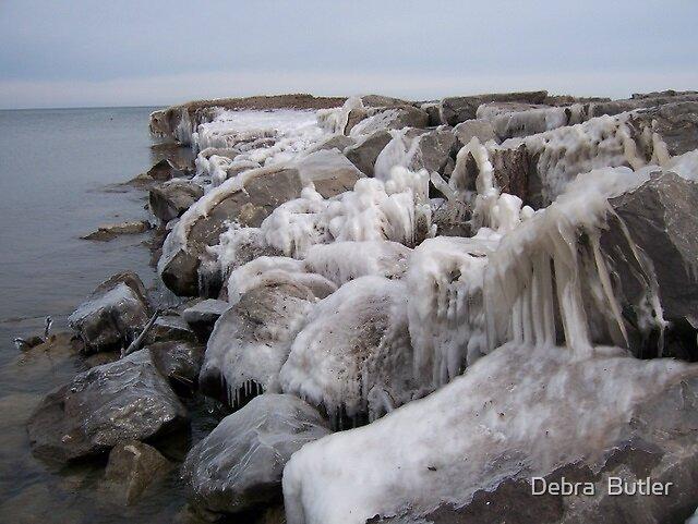 Ice Rocks by Debra  Butler