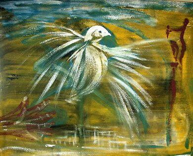 Cuban Dove by stevephillips