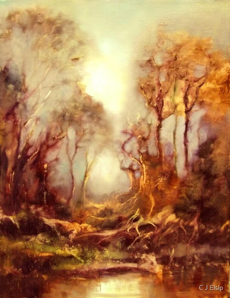 Woodland Mist by C J Elsip