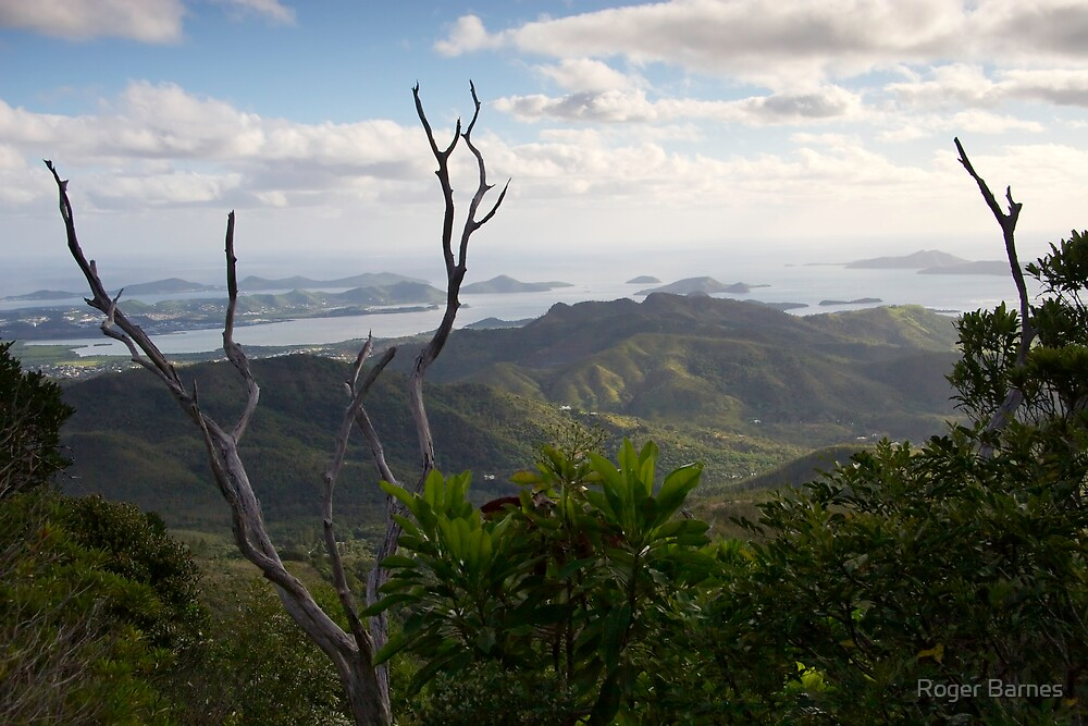 View from Mt Koghi, New Caledonia by Roger Barnes