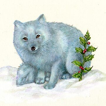 arctic fox by bubblebot