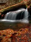 Delicate Cascade (revisited) by Aaron Campbell