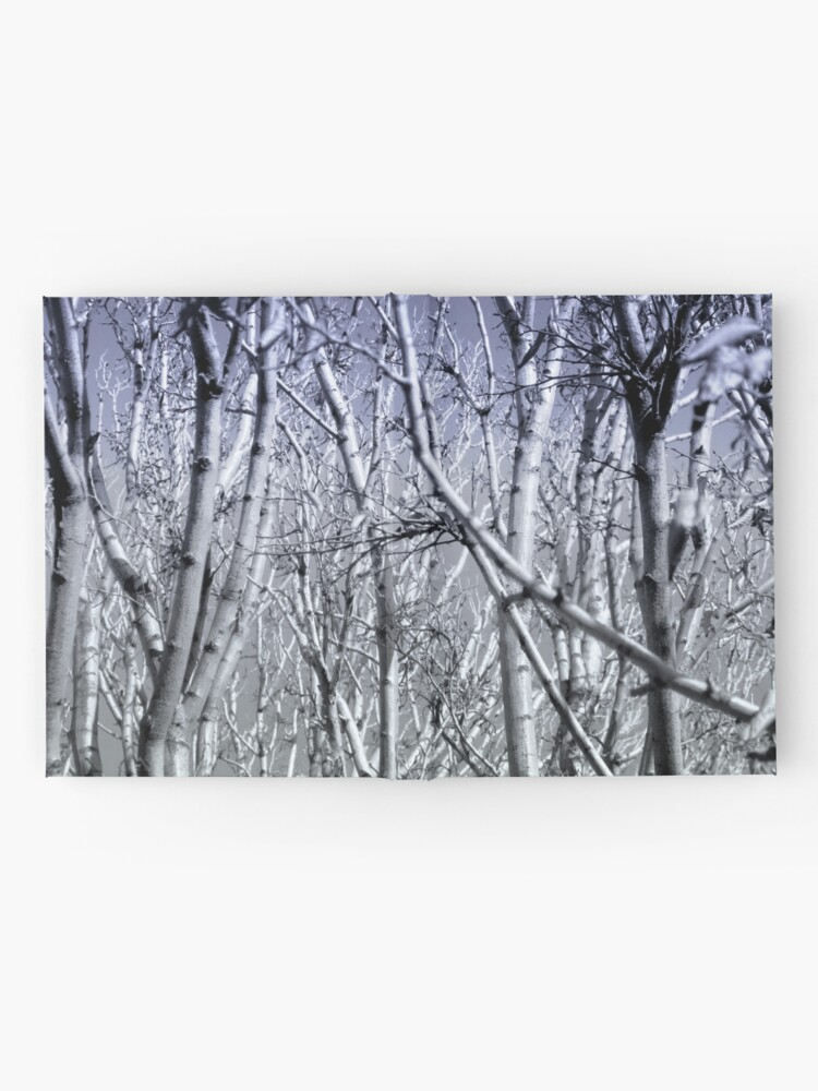 Alternative Ansicht von Hoher Kontrast Wald Foto Notizbuch